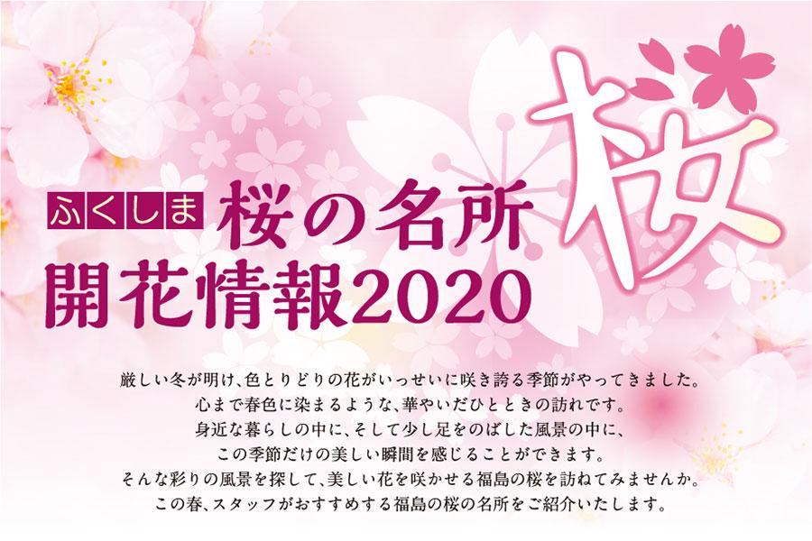 開花 福島 予想 2020 桜