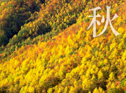 紅葉・秋の裏磐梯