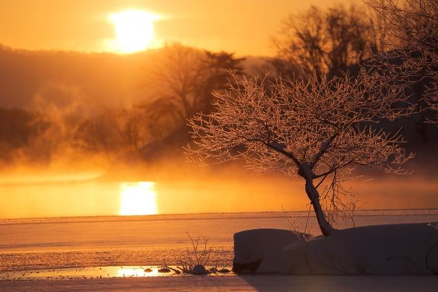 自然に囲まれながら、心安らぐ休日 スタンダードプラン/和モダン<エントランス側>